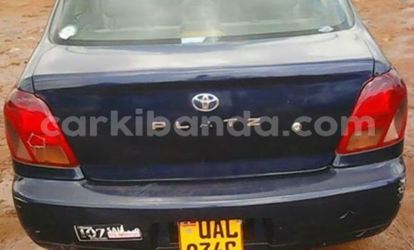 Buy Used Toyota Platz Other Car in Kampala in Uganda