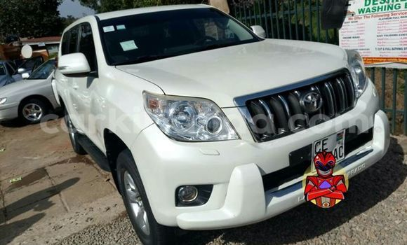 Buy Used Toyota Prado White Car in Busia in Uganda