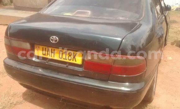 Buy Used Toyota Corona Black Car in Busia in Uganda