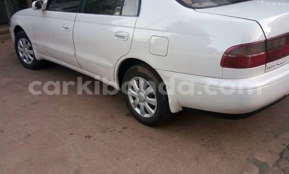 Buy Used Toyota Corona White Car in Busia in Uganda