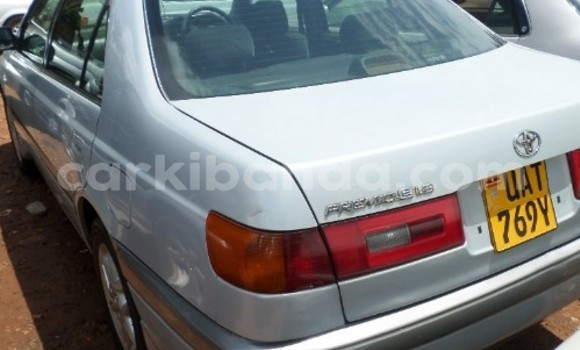 Buy Used Toyota Premio White Car in Arua in Uganda