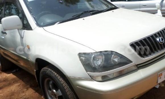 Buy Used Toyota Ractis White Car in Arua in Uganda