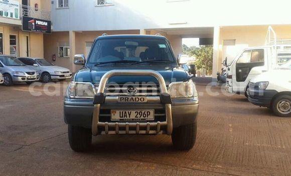 Buy Used Toyota Land Cruiser Prado Green Car in Busia in Uganda