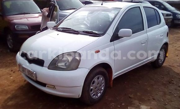 Buy Used Toyota Vitz White Car in Busia in Uganda