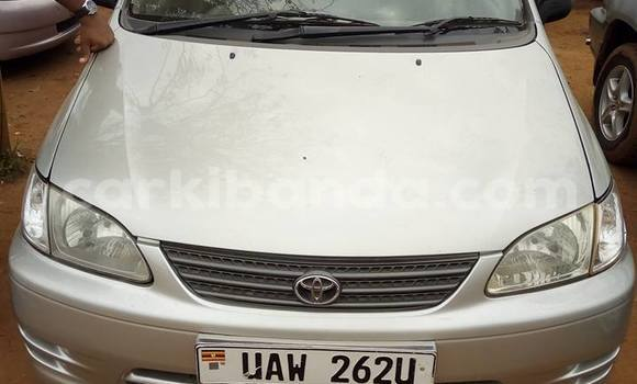 Buy Used Toyota Spacio Silver Car in Busia in Uganda
