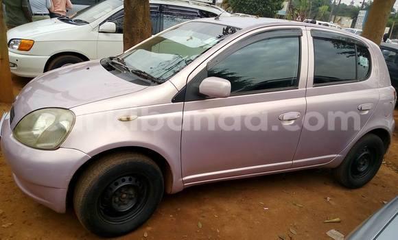 Buy Used Toyota Vitz Other Car in Busia in Uganda