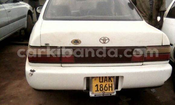 Buy Used Toyota Corolla White Car in Busia in Uganda