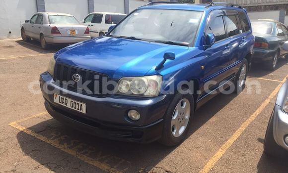 Buy Used Toyota Kluger Blue Car in Busia in Uganda