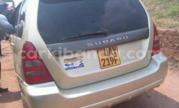 Buy Used Subaru Forester Other Car in Busia in Uganda