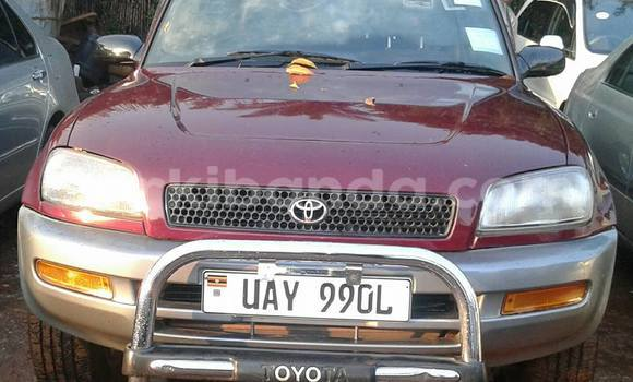 Buy Used Toyota RAV4 Red Car in Busia in Uganda