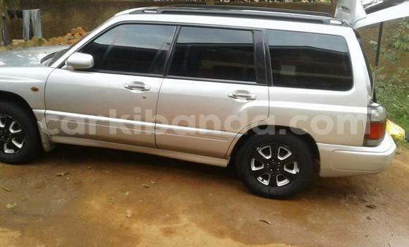 Buy Used Subaru Forester Silver Car in Busia in Uganda