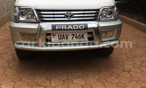 Buy Used Toyota Prado Silver Car in Busia in Uganda