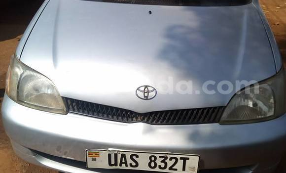 Buy Used Toyota Platz Silver Car in Busia in Uganda