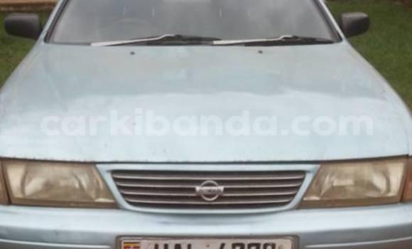 Buy Used Nissan Sunny Other Car in Busia in Uganda