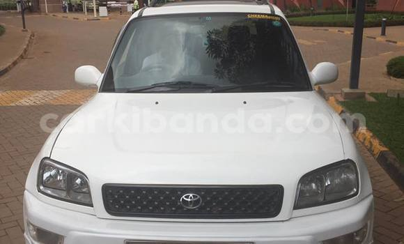 Buy Used Toyota RAV4 White Car in Busia in Uganda