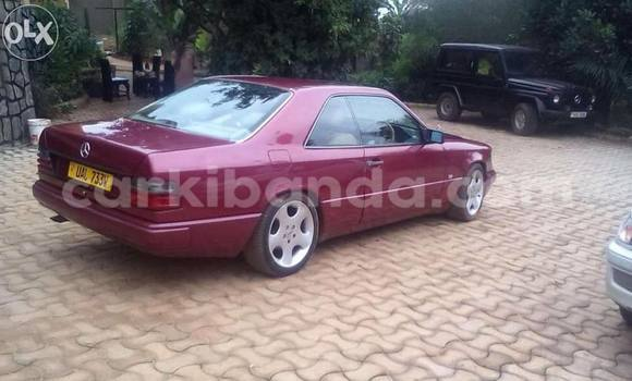 Buy Used Mercedes Benz E–Class Red Car in Arua in Uganda