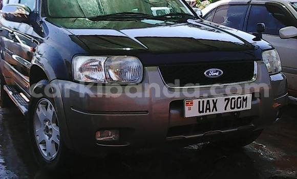 Buy Used Ford Escape Blue Car in Arua in Uganda