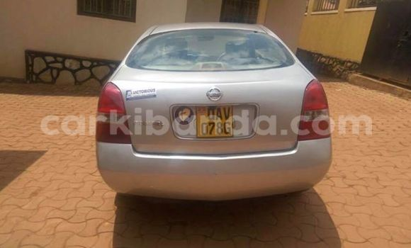 Buy Used Nissan Primera Silver Car in Busia in Uganda