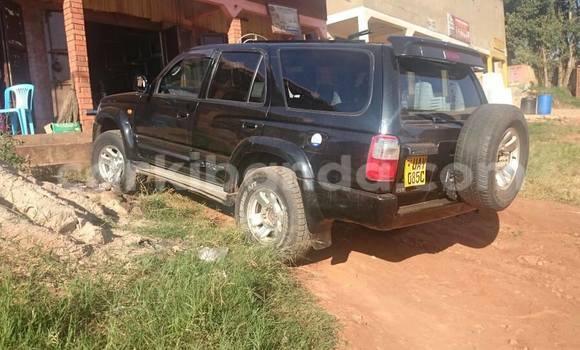 Buy Used Toyota Hilux Surf Black Car in Busia in Uganda