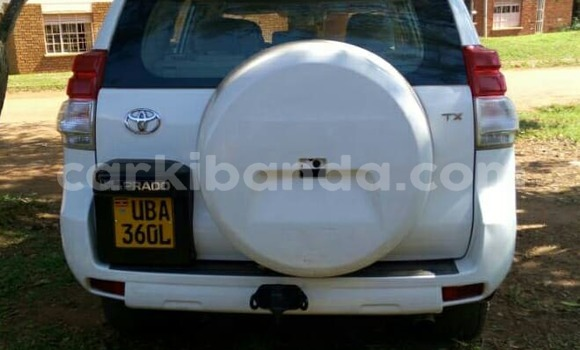 Buy Used Toyota Land Cruiser Prado White Car in Busia in Uganda