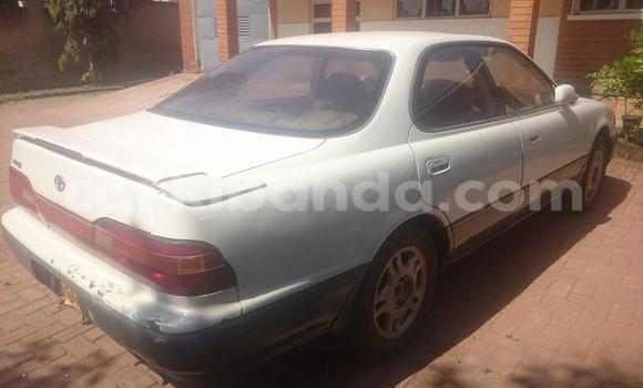 Buy Used Toyota Vista White Car in Busia in Uganda