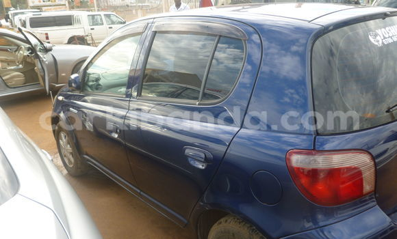 Buy Used Toyota Vitz Blue Car in Arua in Uganda