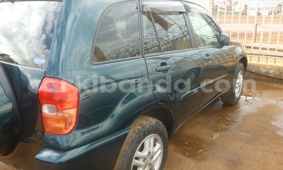 Buy Used Toyota RAV4 Car in Arua in Uganda
