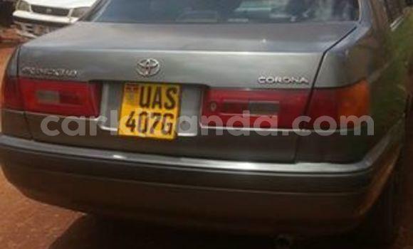 Buy Used Toyota 4Runner Other Car in Kampala in Uganda