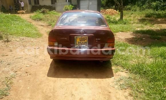 Buy Used Toyota Corsa Red Car in Busia in Uganda