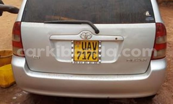 Buy New Toyota Corolla Silver Car in Kampala in Uganda