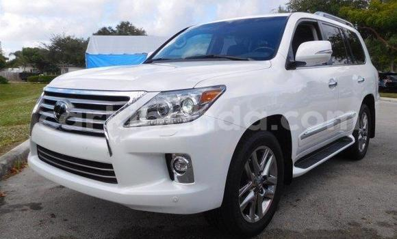 Buy New Lexus LX White Car in Busia in Uganda
