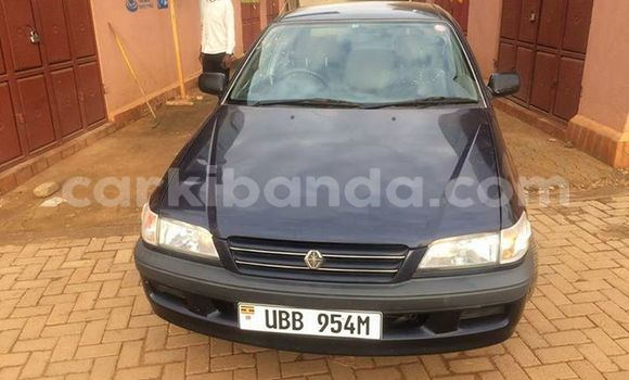 Buy Used Toyota Premio Black Car in Busia in Uganda
