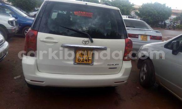 Buy Used Toyota Raum White Car in Busia in Uganda