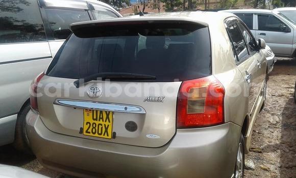 Buy Used Toyota Allex Other Car in Busia in Uganda