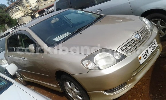 Buy Used Toyota Allex Other Car in Busia in Uganda