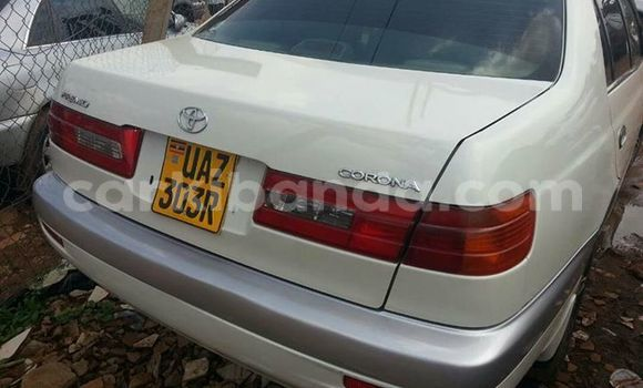 Buy Used Toyota Premio White Car in Busia in Uganda