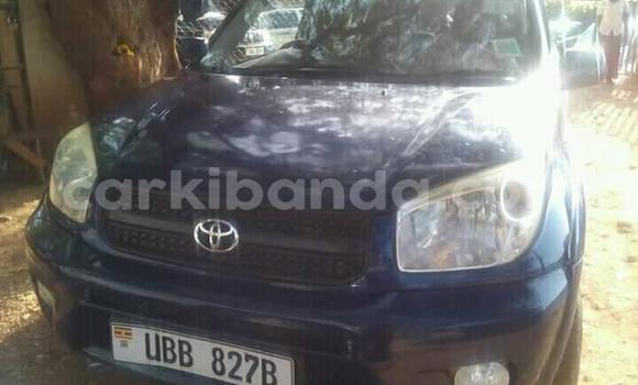 Buy Used Toyota RAV4 Blue Car in Busia in Uganda