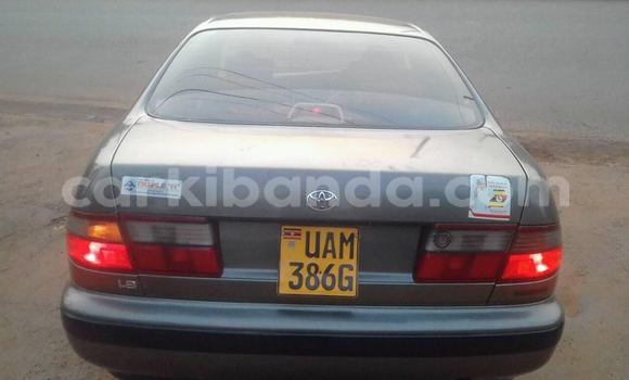 Buy Used Toyota Corona Other Car in Kampala in Uganda