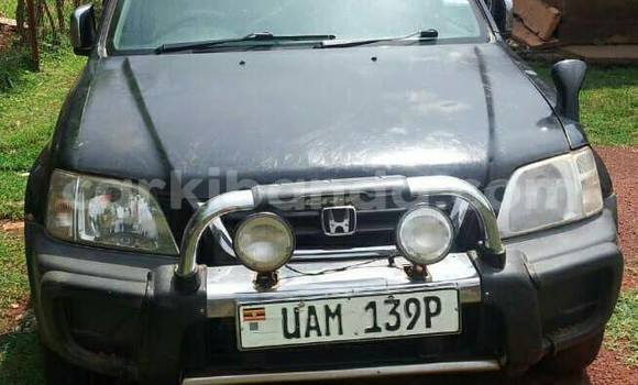 Buy Used Honda CR-V Black Car in Kampala in Uganda