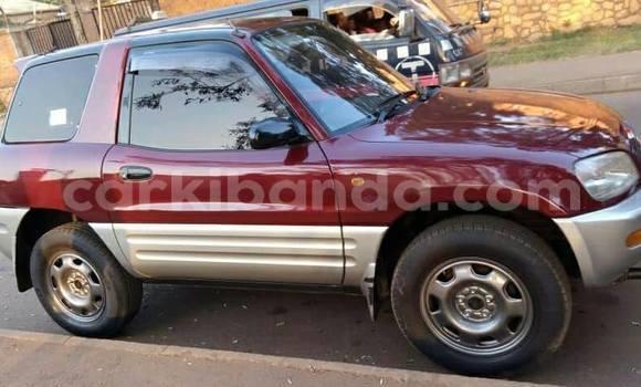 Buy Used Toyota RAV4 Red Car in Kampala in Uganda