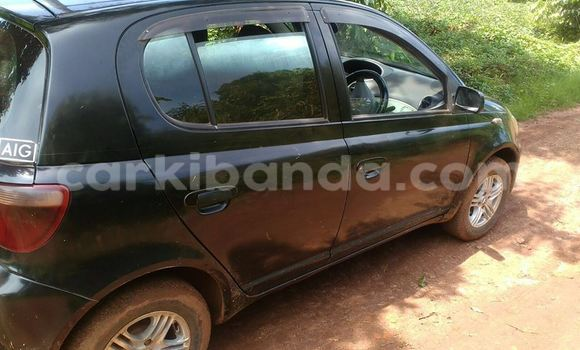 Buy Used Toyota Vitz Car in Arua in Uganda
