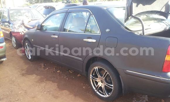 Buy Used Toyota Progress Black Car in Arua in Uganda