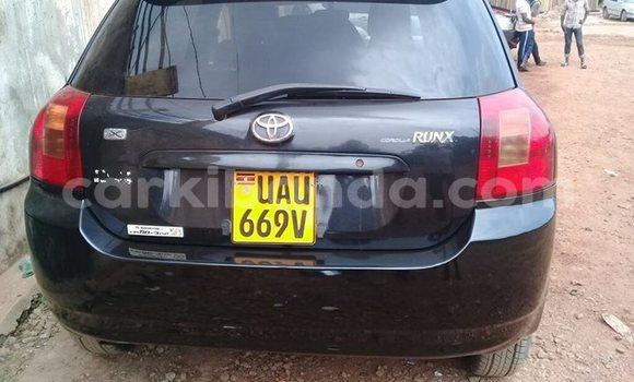Buy Used Toyota Runx Black Car in Kampala in Uganda