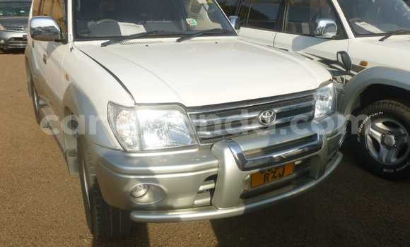 Buy Used Toyota Prado White Car in Arua in Uganda