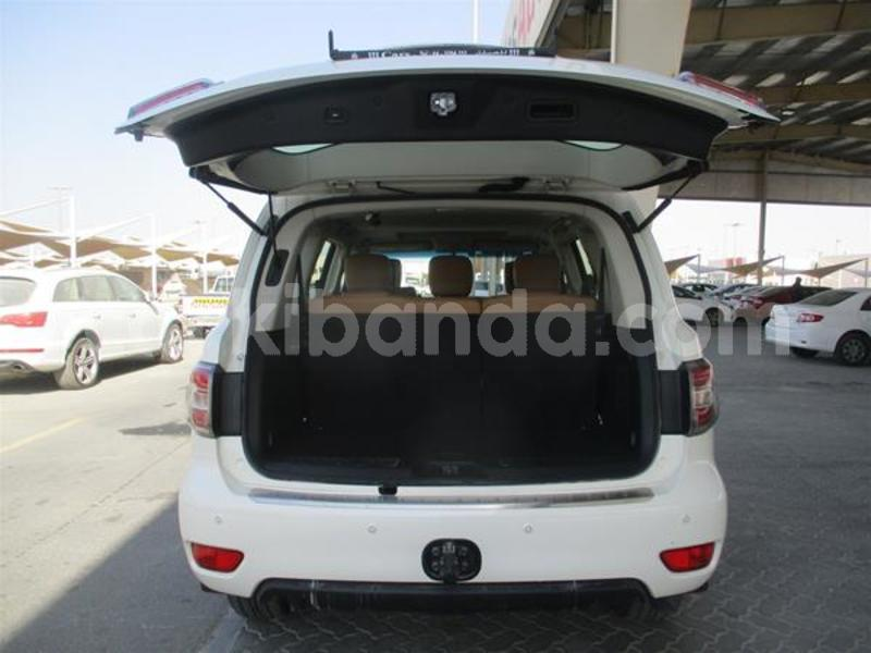 Big with watermark image 31